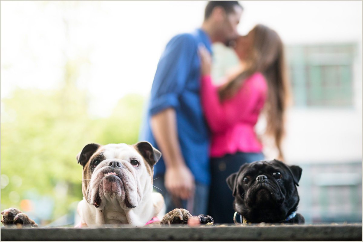 Engagement Photos with dogs in Seattle