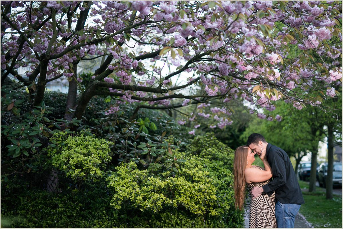 Seattle Cherry Blossom Season Engagement