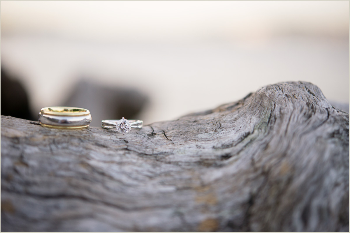 Engagement Rings on Driftwood Alki Beach
