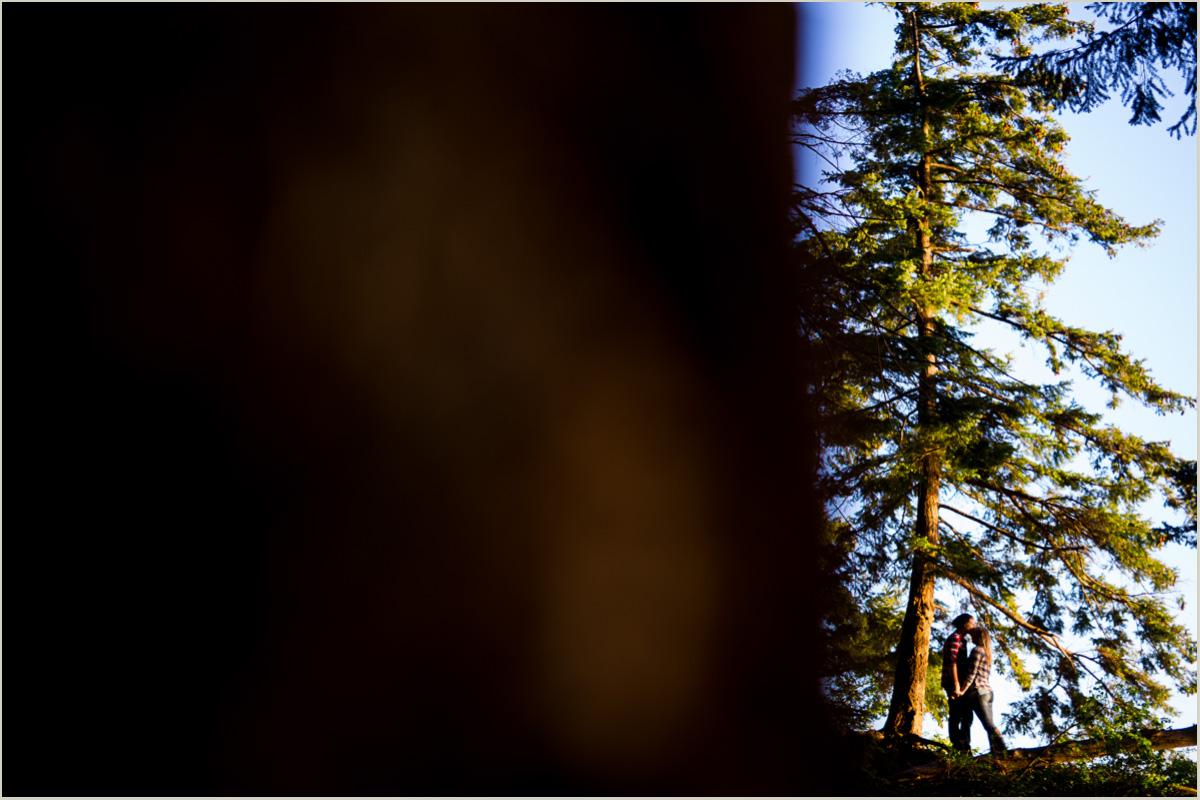 Woodsy Engagement Photos Seattle Washington