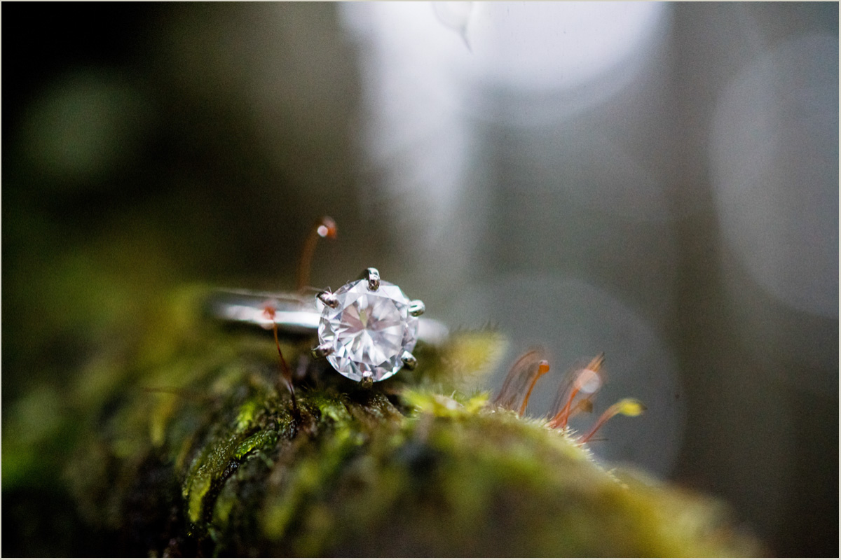 Washington Bride Engagement Ring