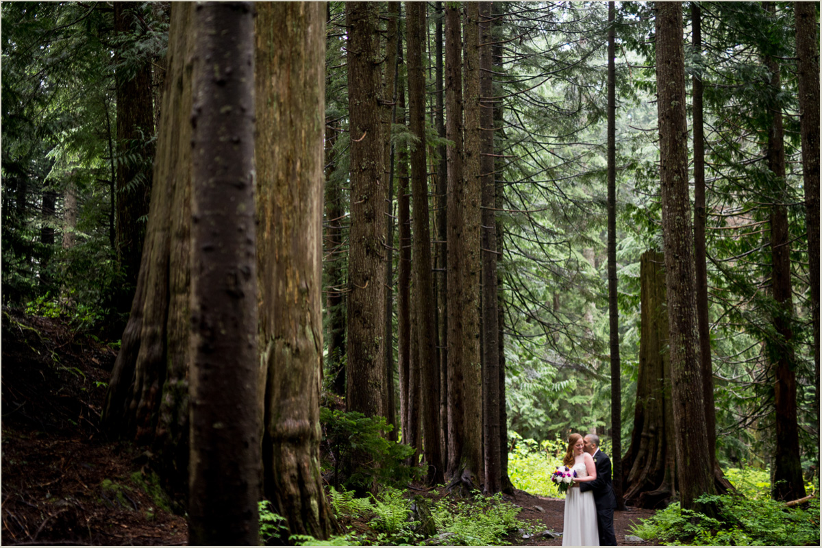 Bride and Groom Standing in Tall Pine Tress in Washington