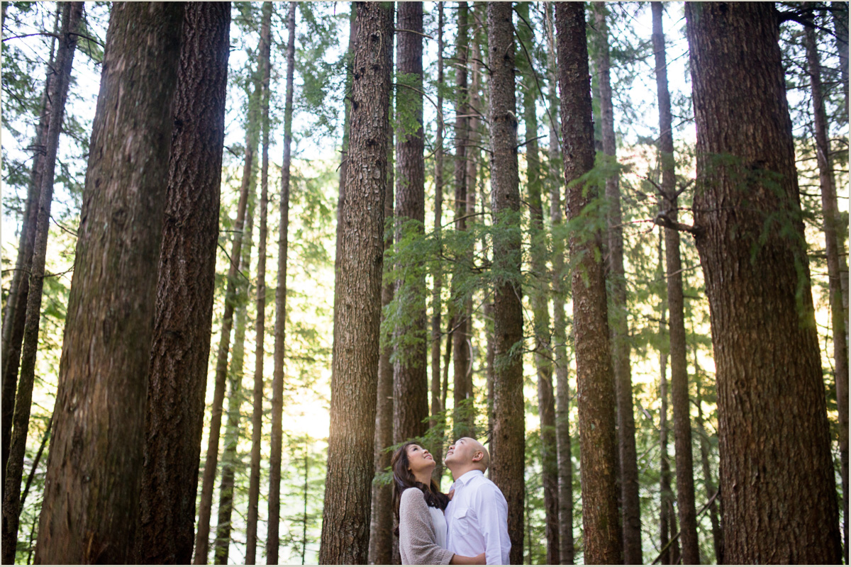 Seattle Forest Engagement Photos