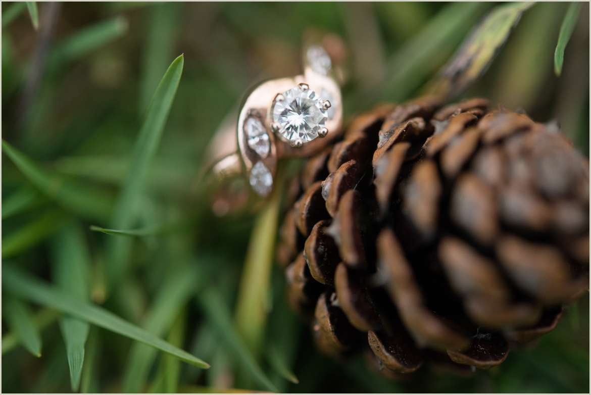 engagement-ring-with-pine-cones