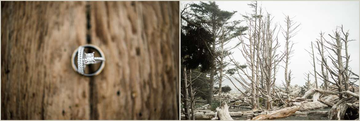 wedding-photos-in-olympic-national-park