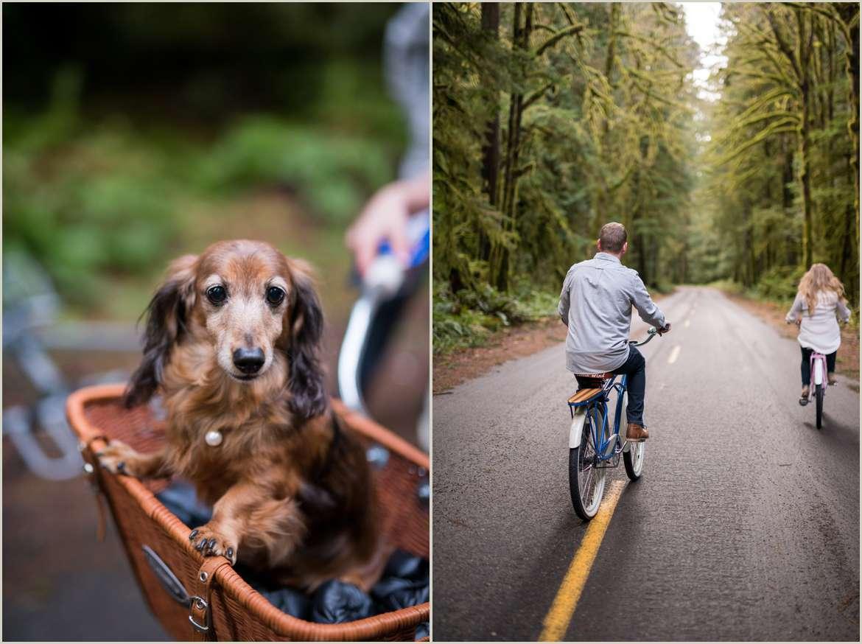 couple riding bikes through olympic national park