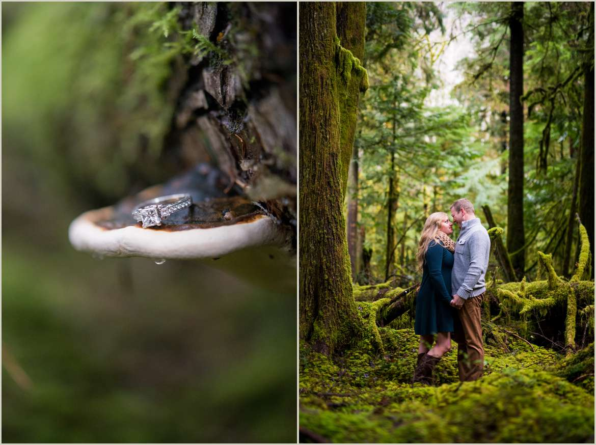 engagement photos in olympic national park