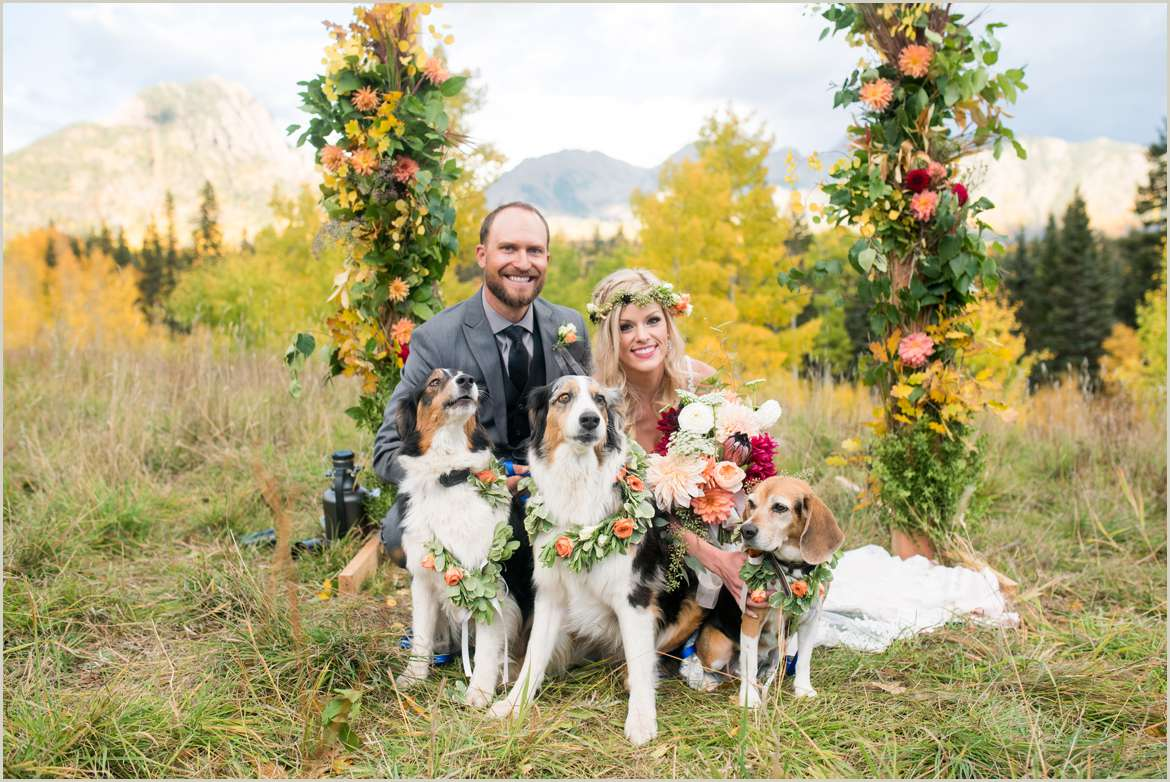 bride and groom with dogs wearing flower wreaths