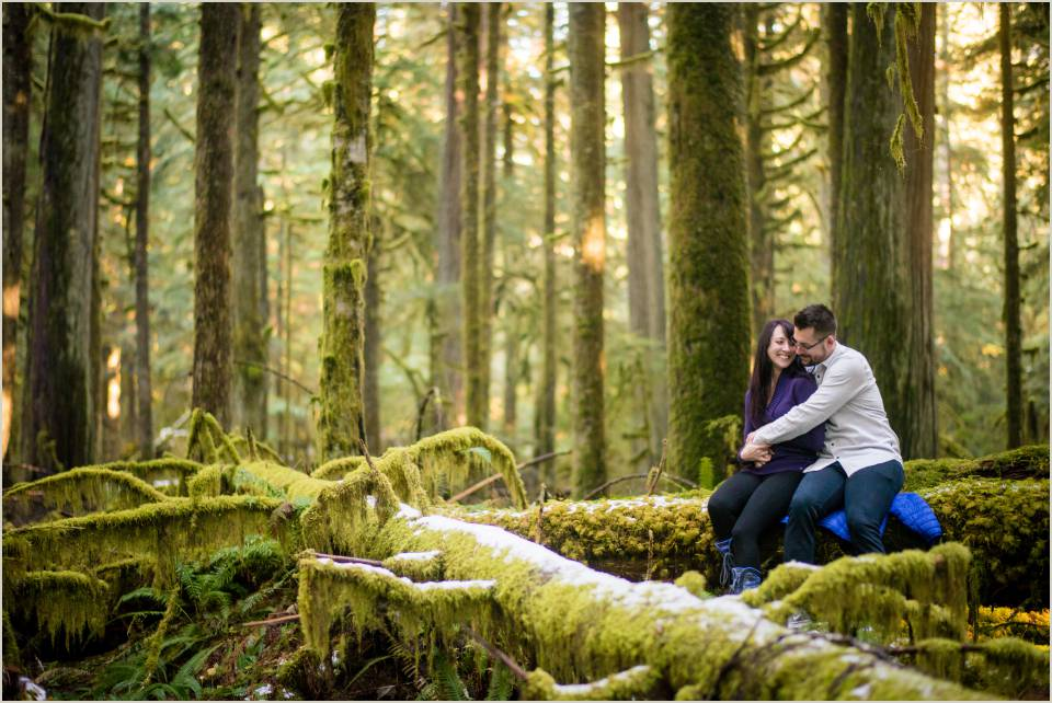 couple sitting on a mossy log in the woods