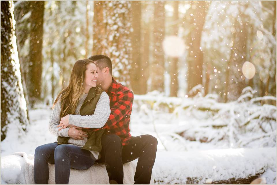 cozy couple sitting log forest