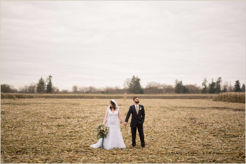 wedding portraits in a corn field