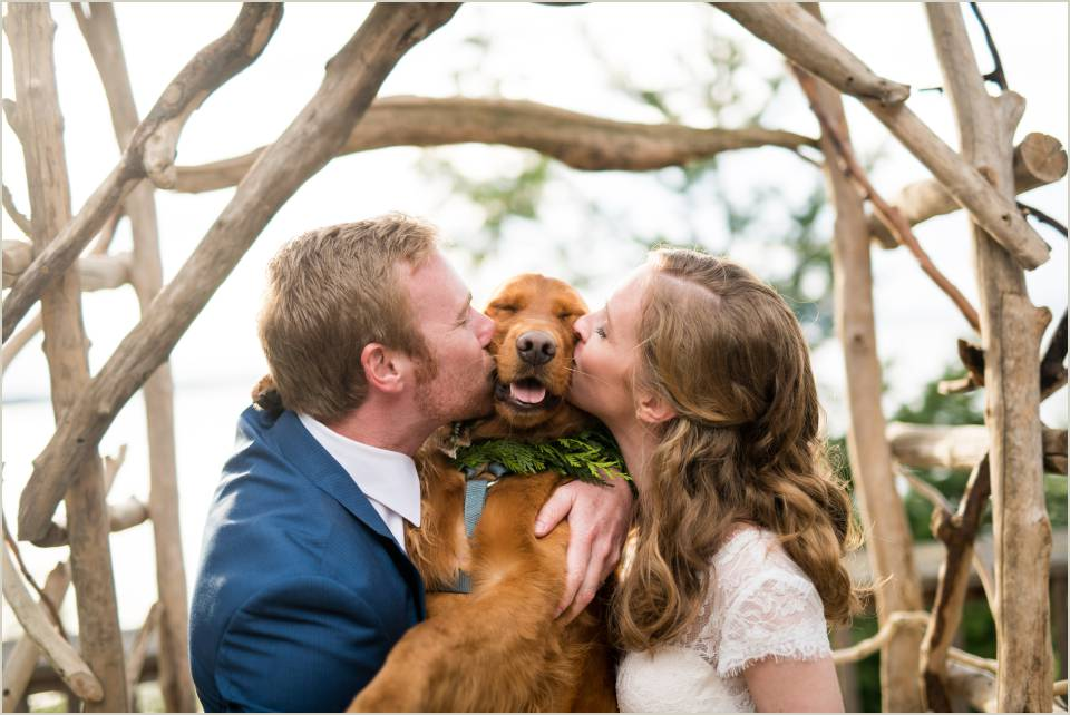 bride and groom kissing dog