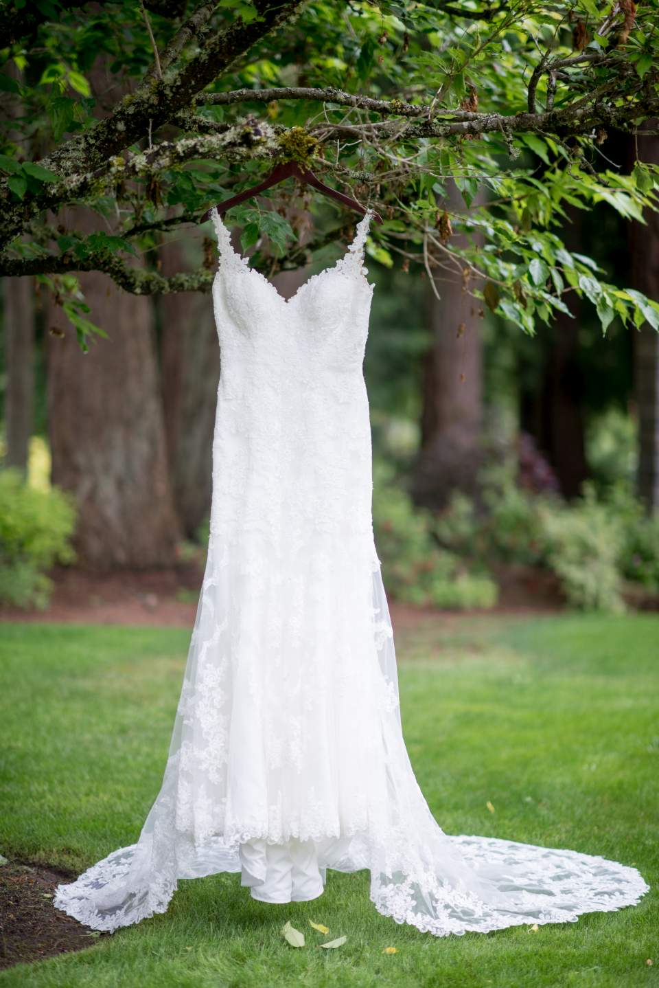 beautiful lace wedding dress hanging in garden