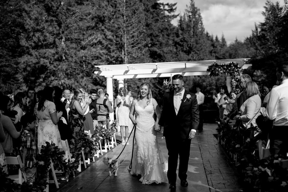 bride and groom walking with dog down the aisle