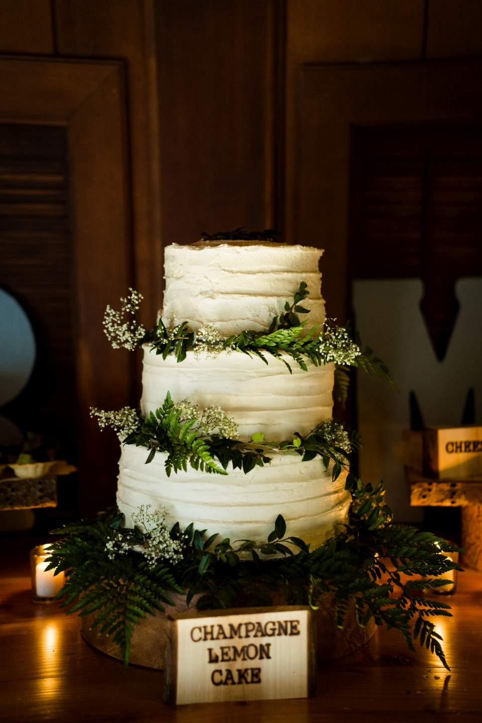 rustic fern cake olympic national park wedding