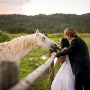 couple and horse wedding day