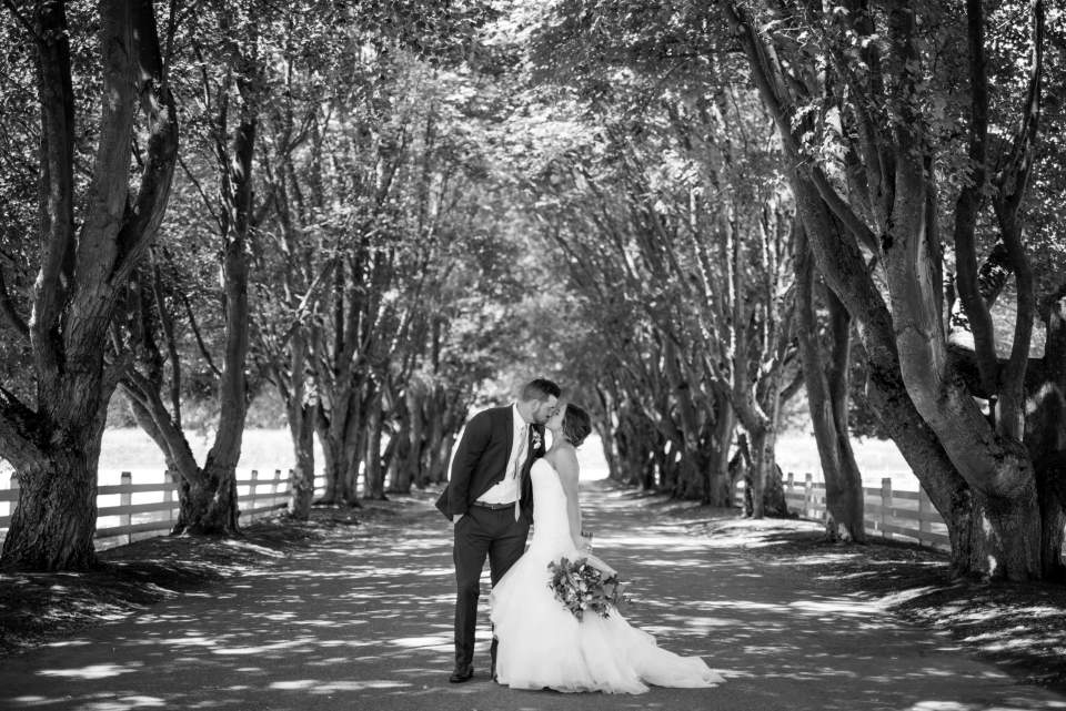 couple kiss in row of trees at maplehurst
