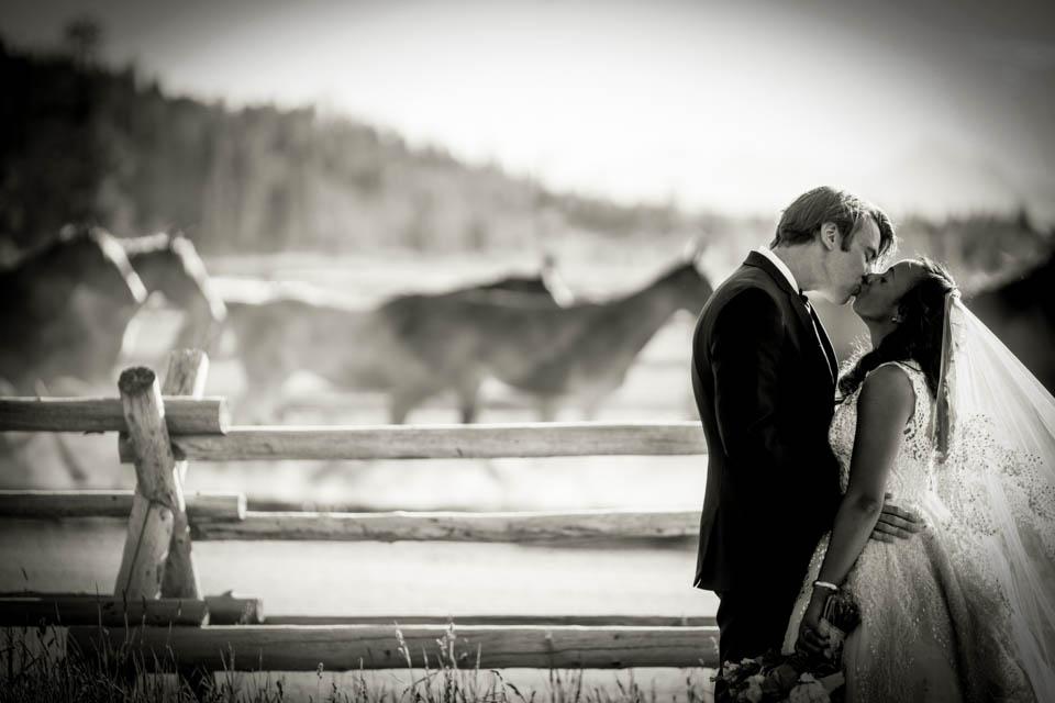 epic bride and groom kissing horses teton wedding photographer salt and pine jackson hole wedding photographer