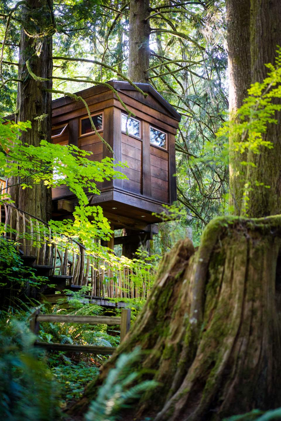 one of the treehouses at treehouse point