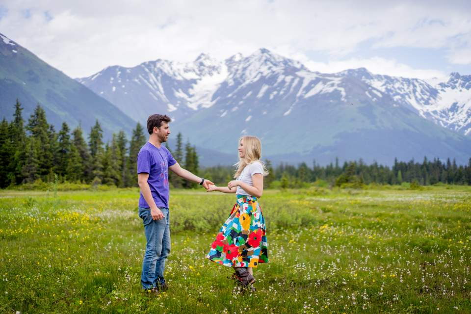 moose meadows mountain view