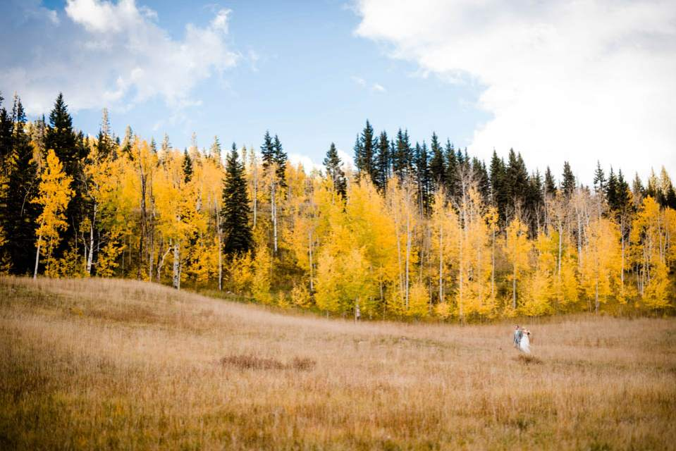 bride and father walking to ceremony through field of aspens