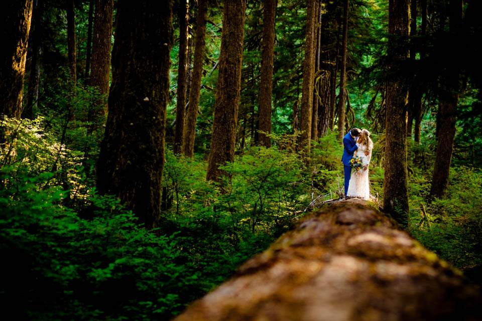 wedding photos in olympic national park