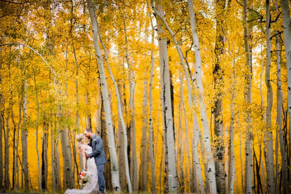 wedding photos with aspens in colorado