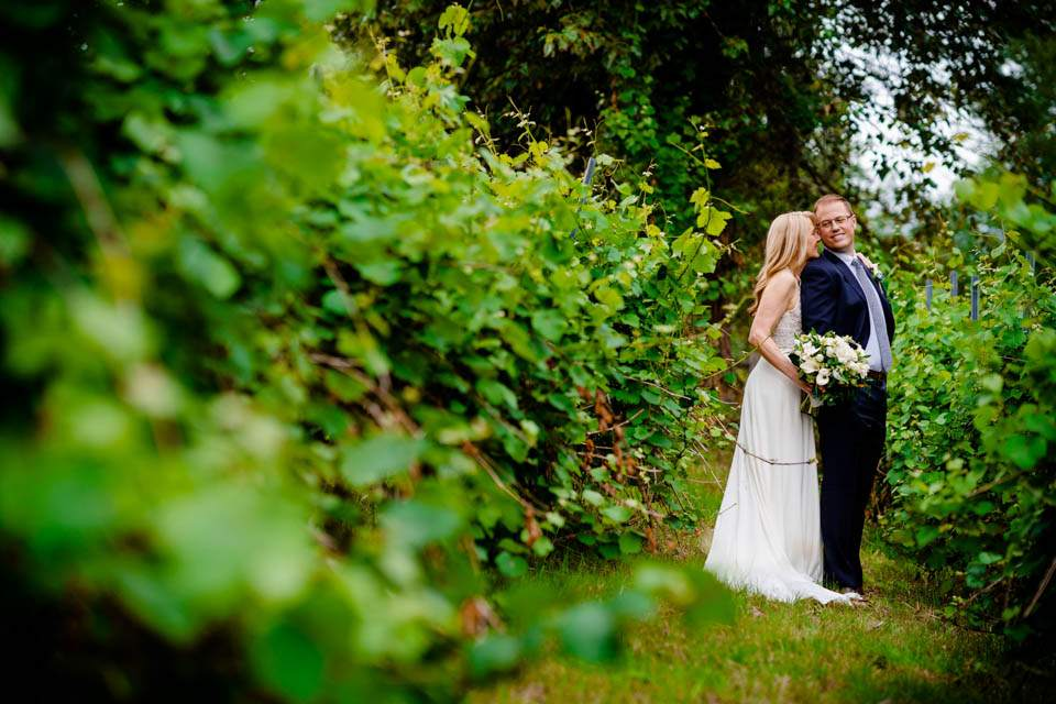 woodinville winery wedding photos in vineyard